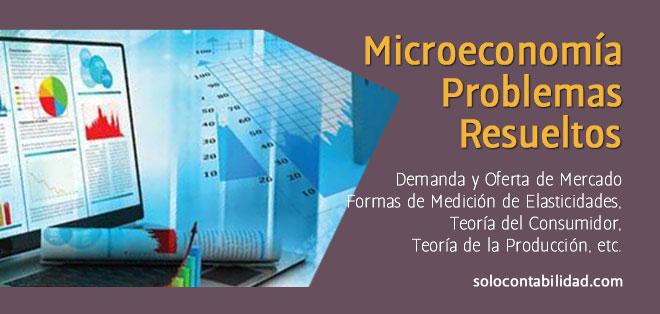 Microeconomía - Ejercicios y Problemas Resueltos: Demanda, Oferta, Elasticidades
